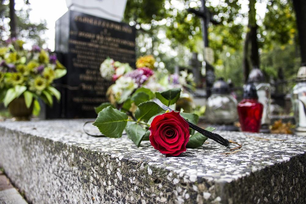 Красные розы и другие цветы на могиле